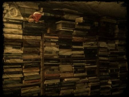A photograph of my book crammed library